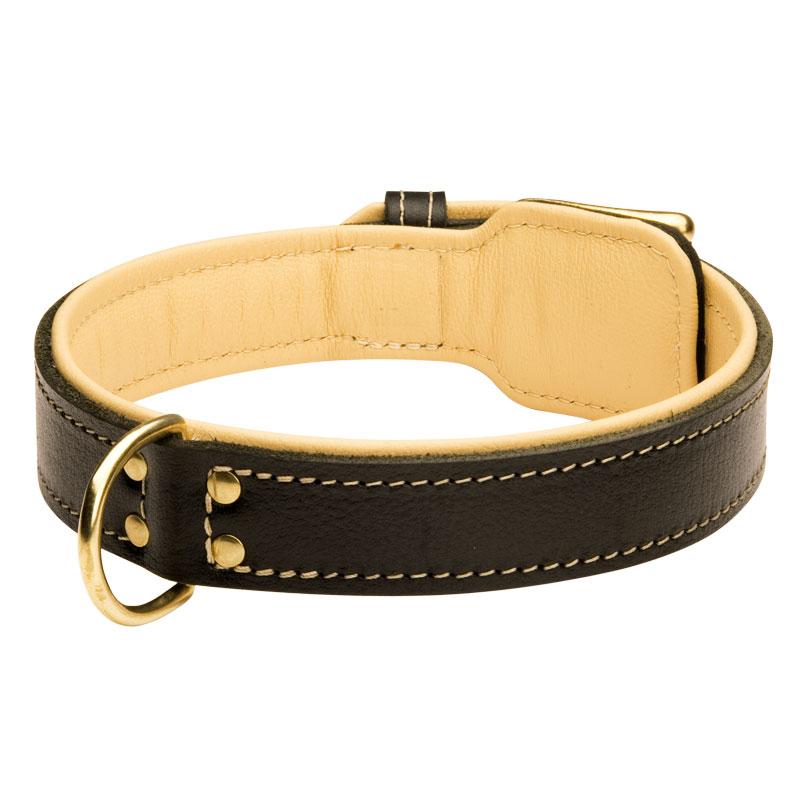 Collar para perros de cuero y forro suave regalo real c443 - Collares de cuero ...